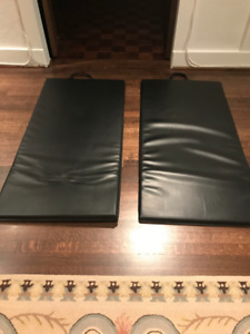 Exercise items: Medicine Ball, Mats (2), Weight Set: $145