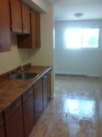 50% OFF 1ST MONTH'S RENT AT 73 NORTH FRONT ST OR 271 JOHN ST