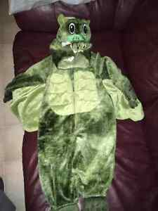 Dragon Costume $10