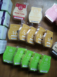Clearing out my personal Scentsy stash Prince George British Columbia image 1