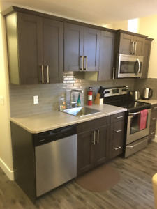 Furnished 2 Bedroom Legal Basement Suite in Parsons Creek North