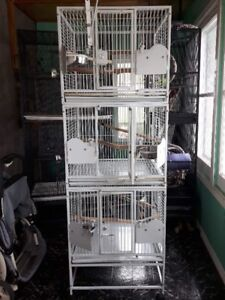 Large Bird Cages