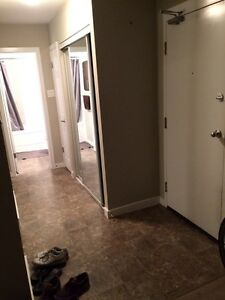 Beautiful 1bd apartment for sublet by Sept. 1/16