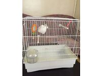 budgie cage comes with stand for sale good condition only £12