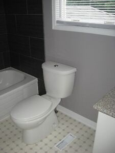 Available Now!!!  Townhouse for rent in lovely neighbourhood! Cambridge Kitchener Area image 2