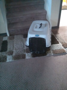 Petmate Small Dog Carrier