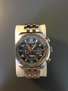 Citizen Men's AT9016-56H World Time A-T Eco-Drive
