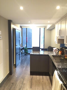 4 Month WINTER 2017 Subletting 1 Room in ICON Waterloo