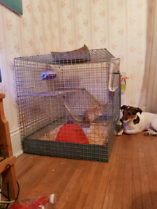 Two-story rodent cage