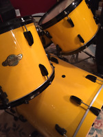Percussion Teacher in Collingwood, ON