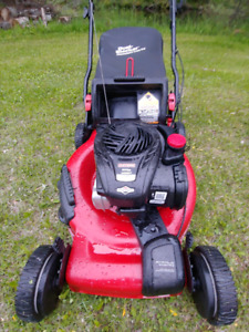 200$ Self propelled lawnmower bagger /mulcher
