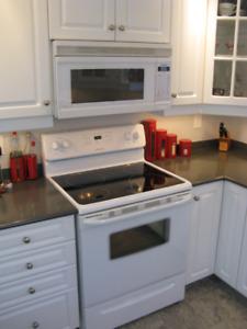 Frigidaire glass top stove/Panasonic over the range microwave