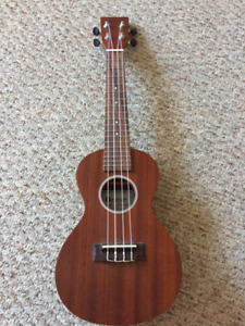 Wood Ukulele For Sale with a bag