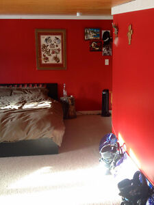Furnished Canmore Room Available May1 Apr15 or now- Cat Included