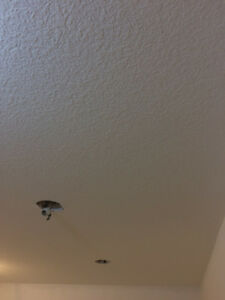 Selling and applying Ceiling texturing (all for $1.0/SF), and in