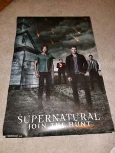 Movie/Tv show posters