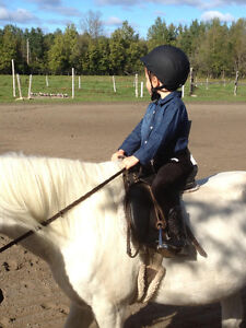 Saturday Horse Club For Kids Only $25 For The Day