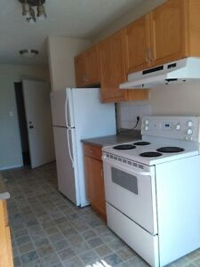 Two bedroom apartment for rent in Downtown