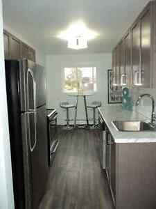 **1 MONTH FREE** 154 UPTOWN WATERLOO  OPEN HOUSE SUN JAN 22 1-3 Kitchener / Waterloo Kitchener Area image 2