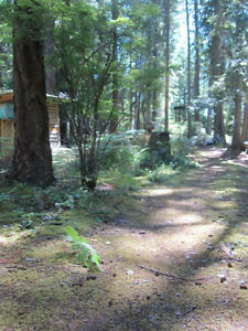 Savary Island Paradise.  Lot for Sale.  $48500