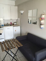 Furnished Studio near McGill and Place des Arts with nice view