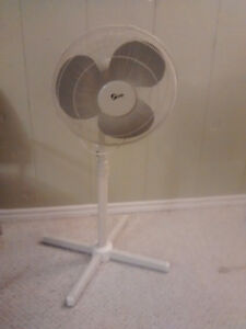 Moving sale 2 stand fan Kitchener / Waterloo Kitchener Area image 1