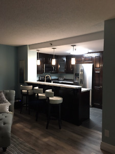 Luxury Furnished Condo, Harbourside Downtown Dartmouth