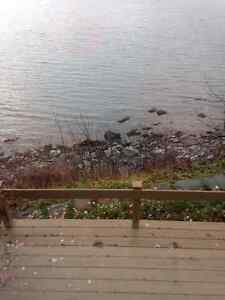OCEAN FRONT PROPERTY IN SPANIARDS BAY!!!! St. John's Newfoundland image 5