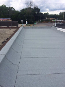 Flat Roof leaking? Let us help you, protect your investment! London Ontario image 3