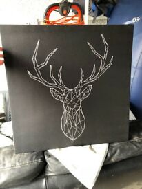 Black stag picture
