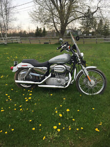 2004 Harley Davidson 883 Sportster(Mint Condition) New Battery j