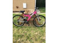 Ladies mountain bike TRAX TFS1