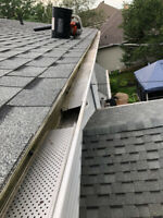 Roof Repair/Gutter cleaning