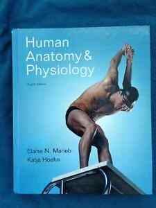human anatomy and physiology textbook marieb pdf