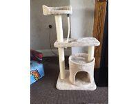 Brand new cat activity tree