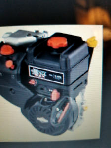 Need Briggs and Stratton Snowblower Engine