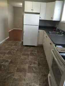 Rent Free for January - 2 BR Apt. Quiet East End Cul de Sac St. John's Newfoundland image 2