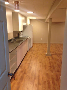 Beautiful all-inclusive 1 bedroom basement apartment - South End