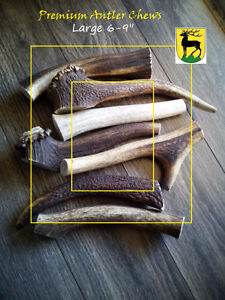 A grade Antler Dog Chews (5 pounds free shipping)