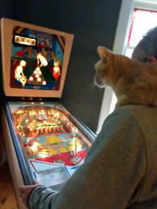 Pinball | Buy New & Used Goods Near You! Find Everything ...