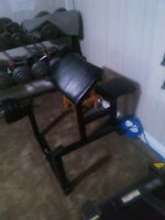 Arm Curl Bench