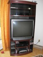 Entertainment unit with Television