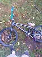 CUSTOM BMX  NORCO RIVET FOR SALE