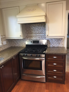 Kitchen Cabinets & Granite Countertops - in good used condition