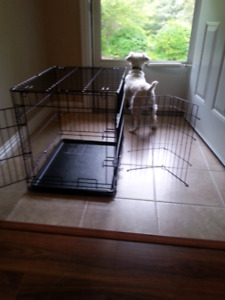 Black wire metal dog crate