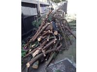 Free firewood logs