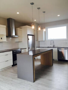Open! Modern! Perfect for Roommates!!!