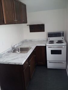 Charming Downtown Kingston 2 Bedroom Apt Nov 1 heat included