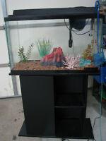Complete Aquarium Set-up