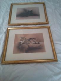 Ben Sorrell Cat Prints